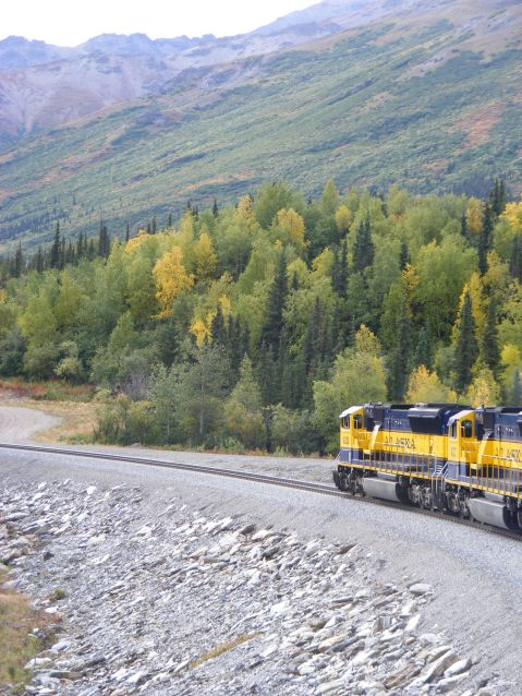 Alaska Railroad train