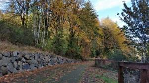Cushman Trail_Fall