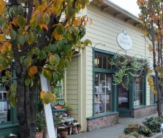 Darvills Bookstore, Main Street