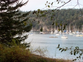 Deer Harbor..