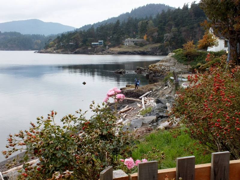 Orcas Island, San Juans,Washington