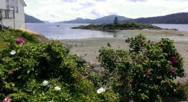 Indian Island, view from Eastsound ... 6