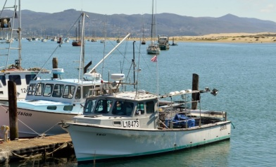 1. Morro Bay harbor