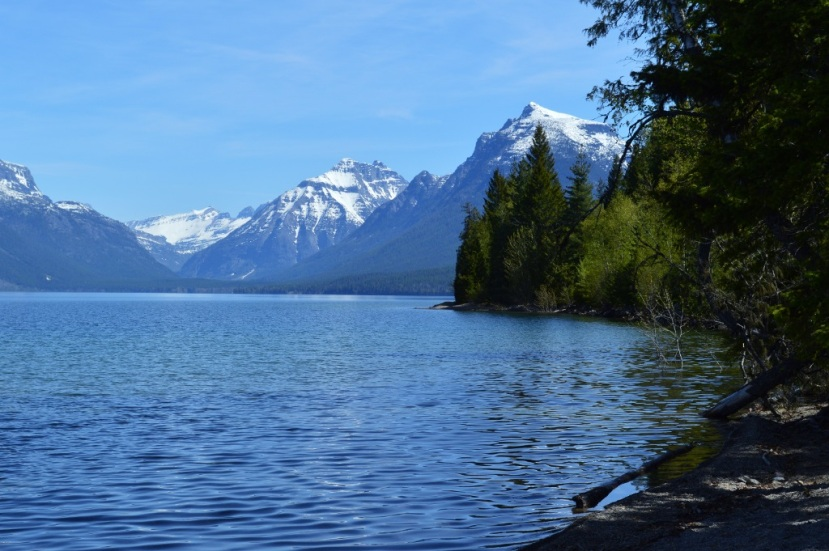 Glacier National Park, late Spring ~ Photos