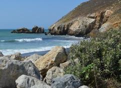 rocky shore ....