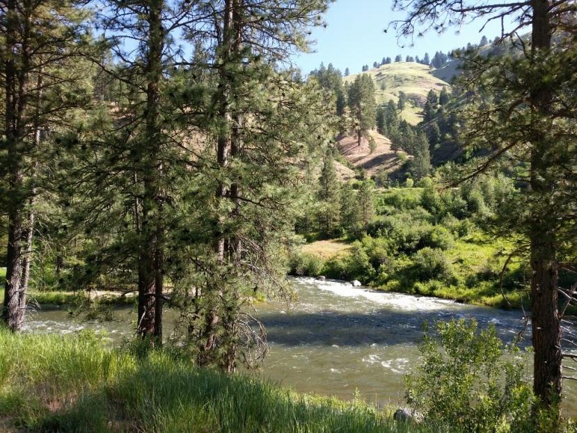 Road Trip ~ Western Washington to Boise and Coeurd'Alene
