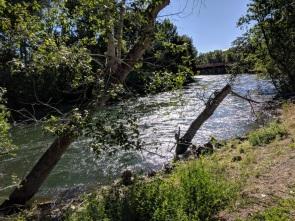 Boise River, near Boise State