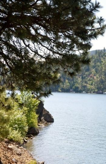Lake CDL ....