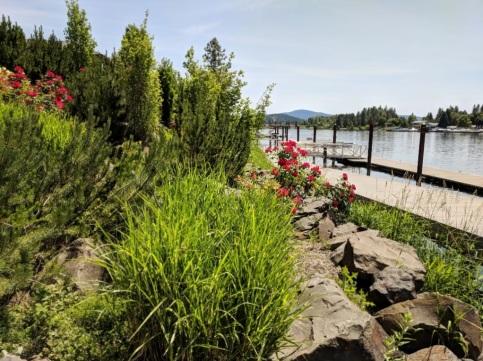 Riverfront area