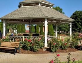 Rose Garden 7