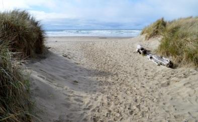 26 path to Neahkahnie Beach, south of Cannon Beach
