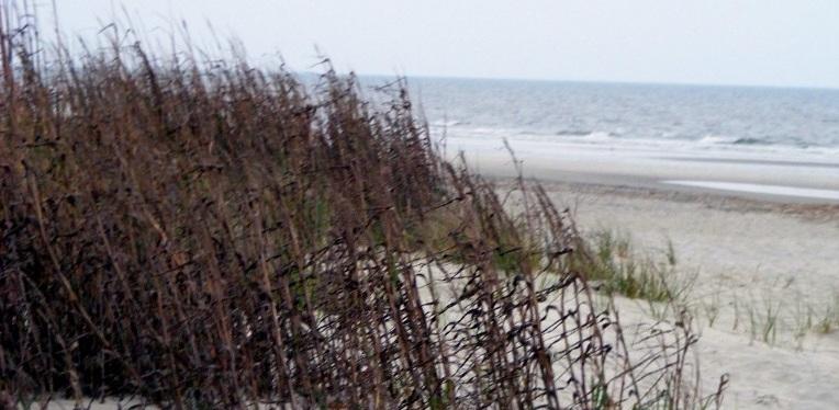 Hilton Head Beach, SC ~Photos