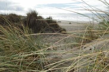 27 Neahkahnie Beach ...