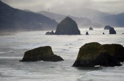 41 Ecola State Park .....