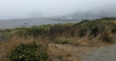 coast view_4