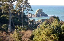 Ecola State Park, south of Seaside