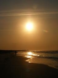 Isle of Palms Beach, SC 27
