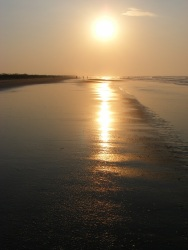 Isle of Palms Beach SC 32