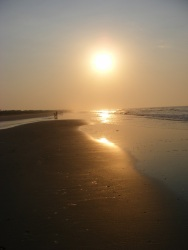 Isle of Palms Beach, SC 34