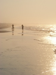Isle of Palms Beach SC 40