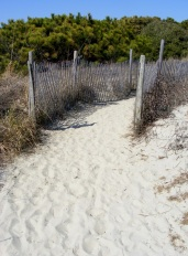 Kiawah Beach 10