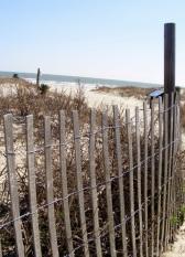 Kiawah Beach 11