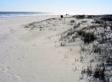Kiawah Beach 7