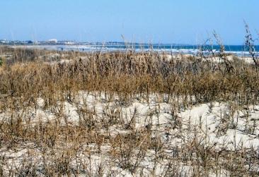 Kiawah Beach 8