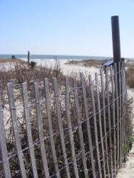 Kiawah Beach, SC 4