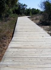 Kiawah Boardwalk to Beach
