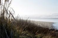 Manzanita Beach 1
