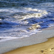 Myrtle Beach 11