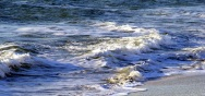 Myrtle Beach 12