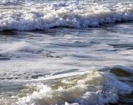Myrtle Beach 16