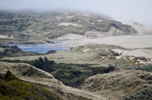 Sand dunes area