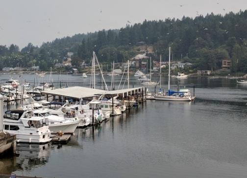 Gig Harbor 5