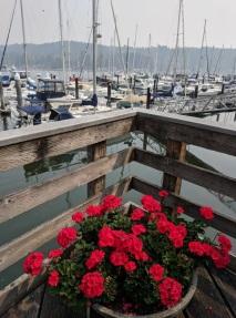 Gig Harbor_8