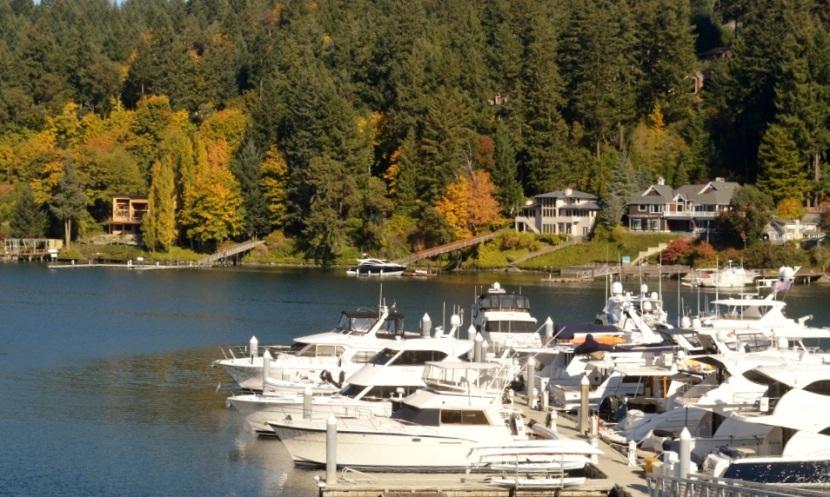 Photos ~ Gorgeous Fall Day ~ Gig Harbor,WA