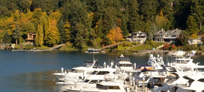Photos ~ Gorgeous Fall Day ~ Gig Harbor, WA