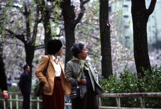 tyo_park_spring