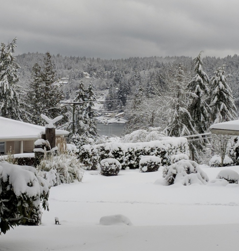 Photos ~ Winter Wonderland, Gig Harbor