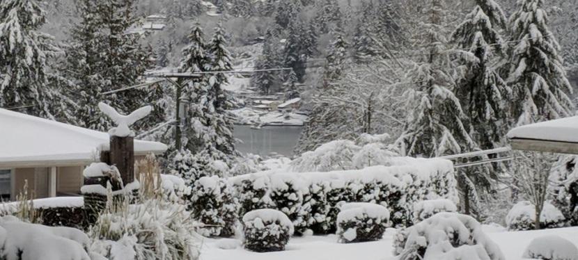 Photos ~ Winter Wonderland, GigHarbor