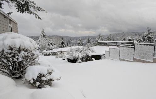 newly fallen snow