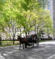 Entering Central Park
