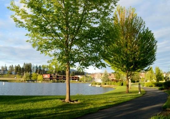 Riverstone Park