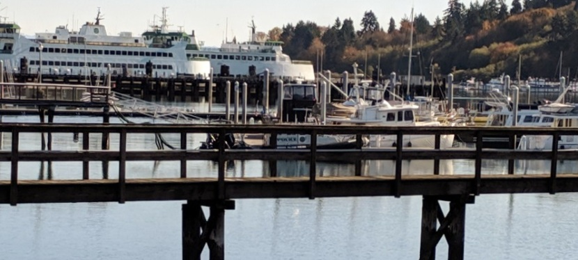 Beautiful Fall Day, Bainbridge Island, WA ~ Photos