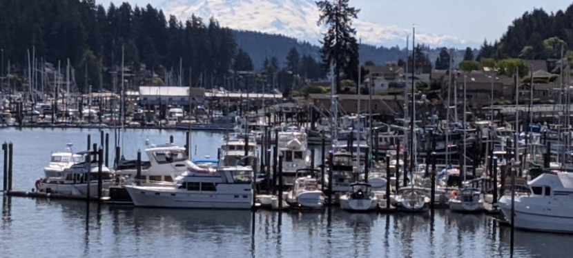 Photos ~ Gig Harbor, Washington ~ May 2020