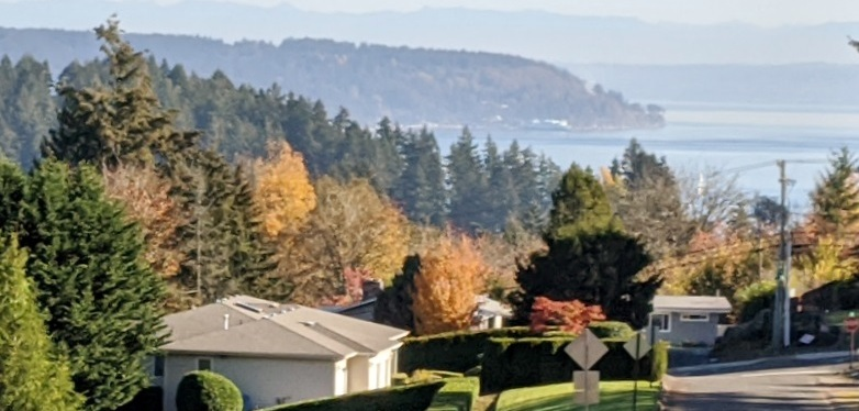Photos ~ Beautiful Fall Day ~ Gig Harbor, WA ~ Nov 2, 2020