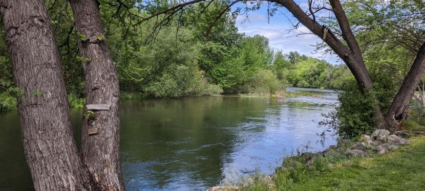 A Walk Along Boise River Greenbelt ~ Eagle, ID ~ Photos ~Quotes